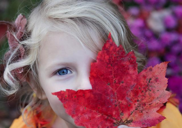 Allergy triggers in kids