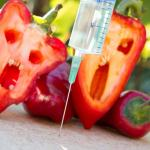 Genetically modified food Pros vs Cons